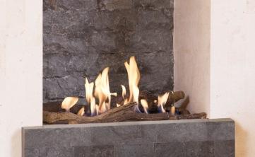 Bio-fire-Todos-gallery-2